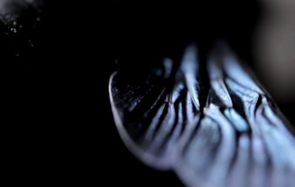 CLOSING IN – SONAR ( NOT OFFICIAL VIDEO )